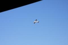 Abfliegen_2011_02